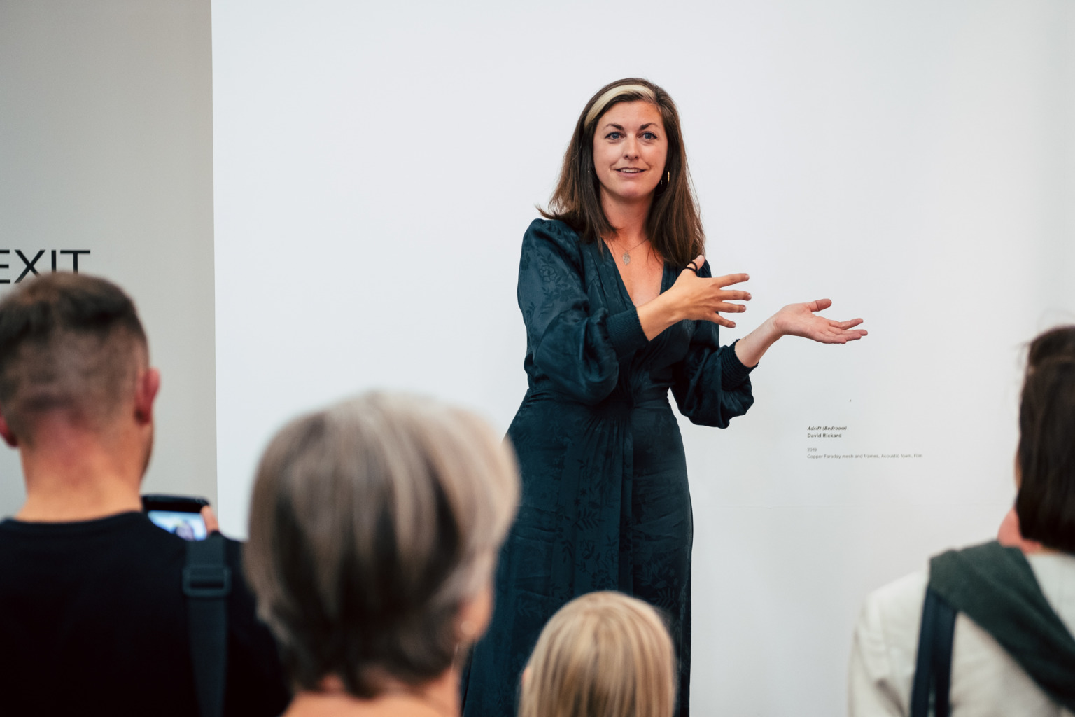 Profile picture of Becca Pelly-Fry, giving a curator's talk