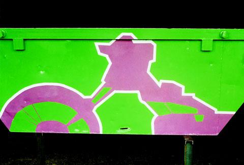 painted skip