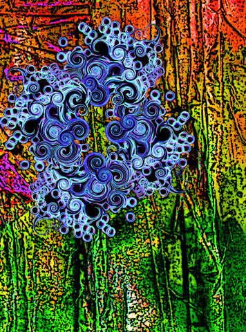 Guggenheim spores 4