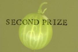 Award for Gooseberry