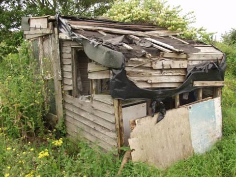 The shed next door