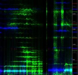 Spectrogram close-up