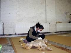 me sawing tripe