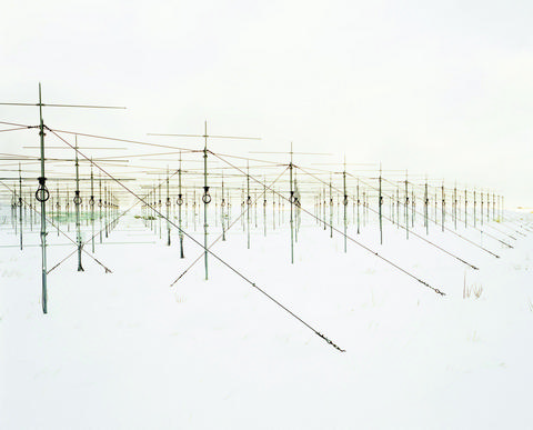 Untitled (Array)