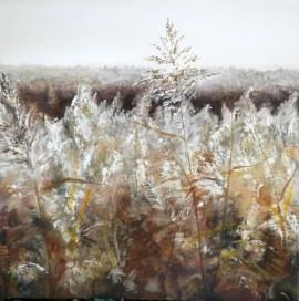 Newport Wetlands, Winter Reeds