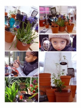 Plant Pots Workshop