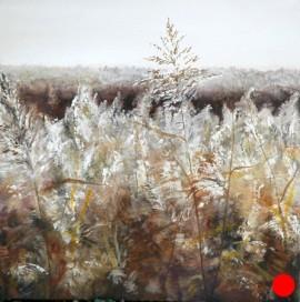 Newport Wetlands Winter Reeds