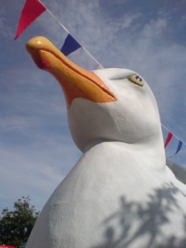 Gull Appreciation Unit