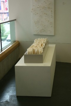 Installation view at The Lightbox Gallery