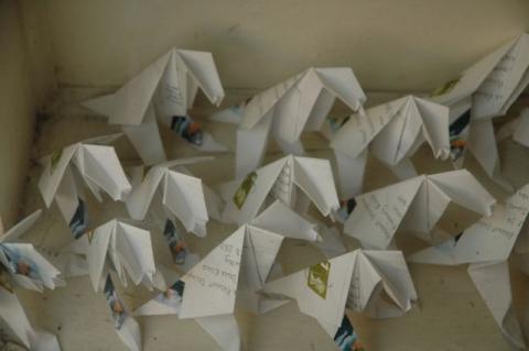 Origami Pigeons