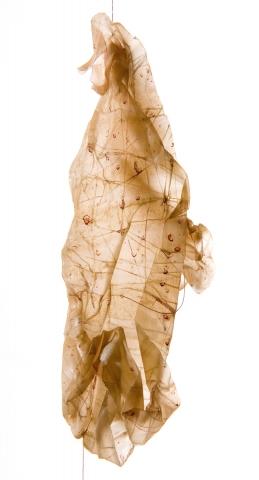 silk form