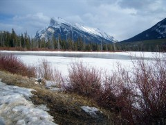 From 'Re-Tracing the Winter Trails' (a last look at the Vermillion Lakes)