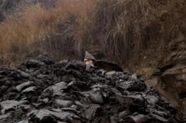 Coal Miners of China