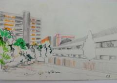 26 Remain , Drawing