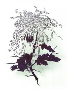Dreamcatcher (chrysanthemum flower)