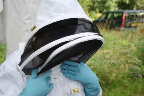 To be a Bee keeper