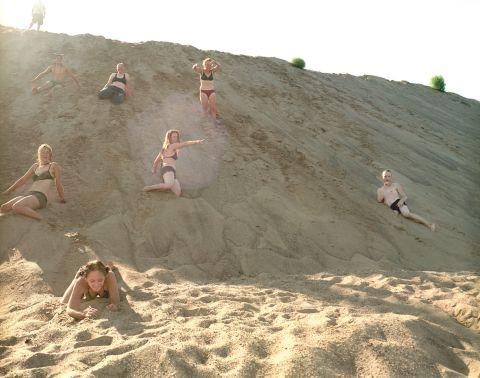 Callie On The Sandbank