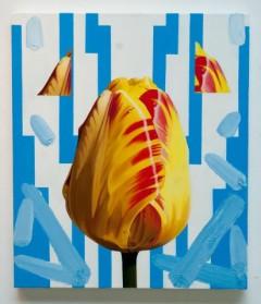 Tulip no.1