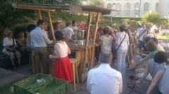 Non-Capitalist Herbal (Tea) Garden