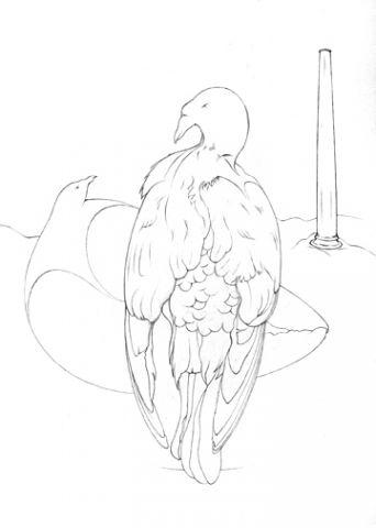 Parmigianino's Pigeon