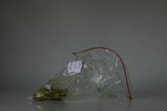 Museum of Contemporary Rubbish Exhibit #0402