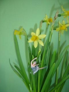 Spring Awakening ii