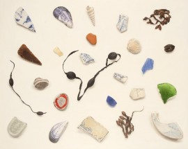 Fragments from a Scottish beach