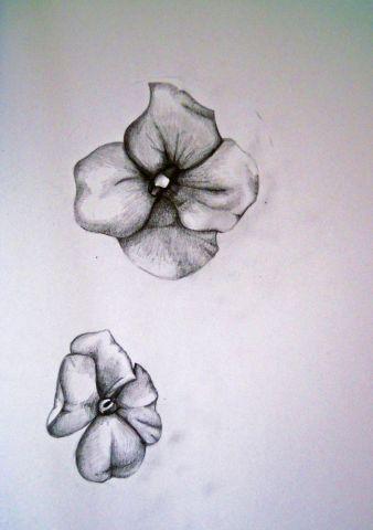 Study of Wallflowers