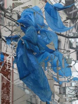 Blue Bayou (digital image)