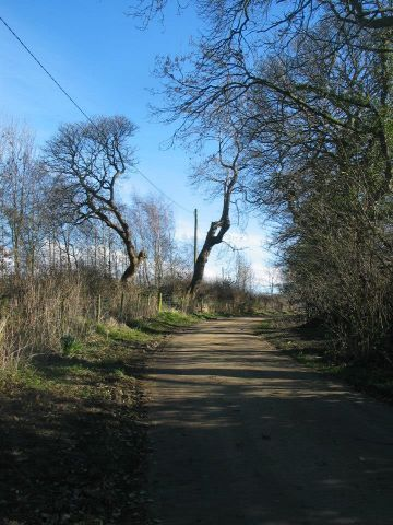 Lane to Liberator crash site