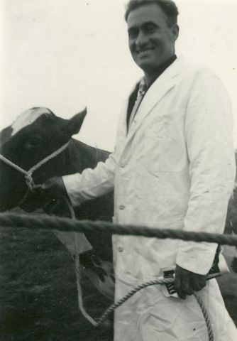 Stojan and prize cow
