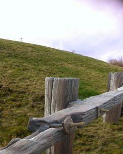 Yorkshire Groyne