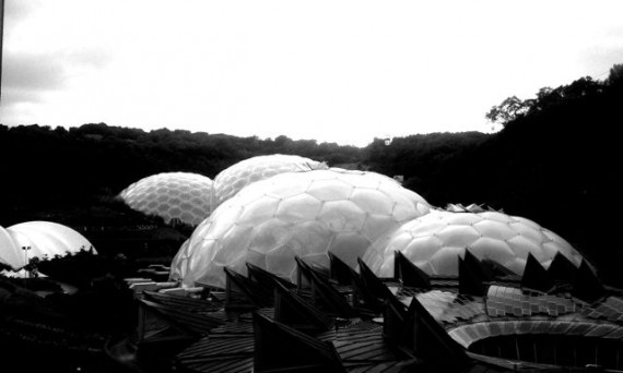 black and white image of eden project biodomes
