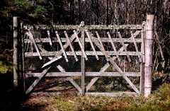 GATE-IN-WOODS