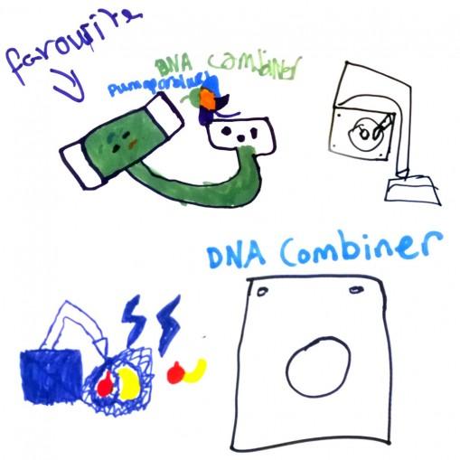 DNA combiner makes new fruit