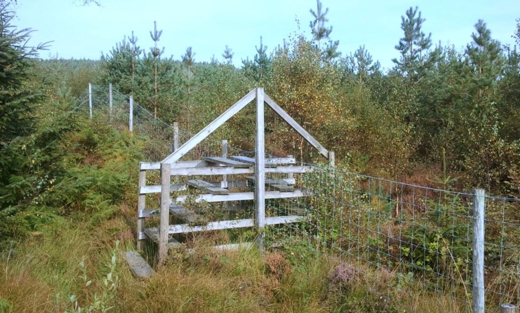wooden structure actoss a fence