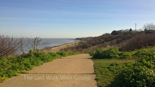 last walk with Cosmo3