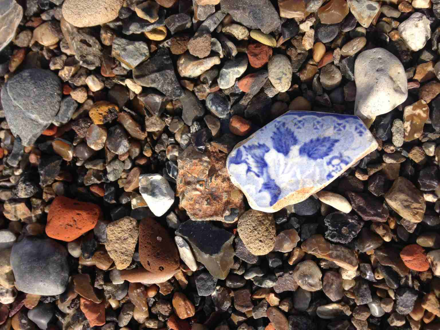 a small piece of pottery on the beach