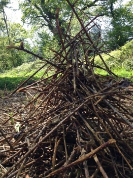 bramble heap