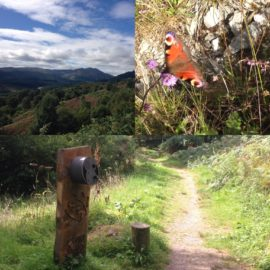 View up Glen Finglas from Lendrick Hill, Butterfly and the Listening Post installed on site.