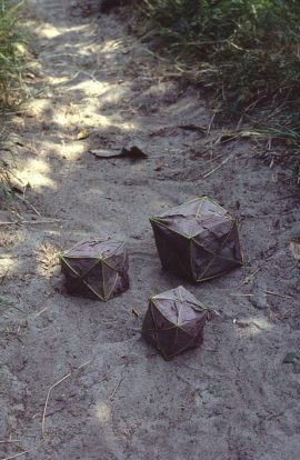 'Sycamore Boxes' (1984) Andy Goldsworthy