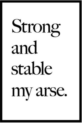 Jeremy Deller, Strong and Stable My Arse. Courtesy Flyingleaps