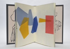 Kate Bernstein, Uccello's Beautiful Battle, 2016. A variable edition of two, screenprint on Simili Japon, bound in book cloth with raised design