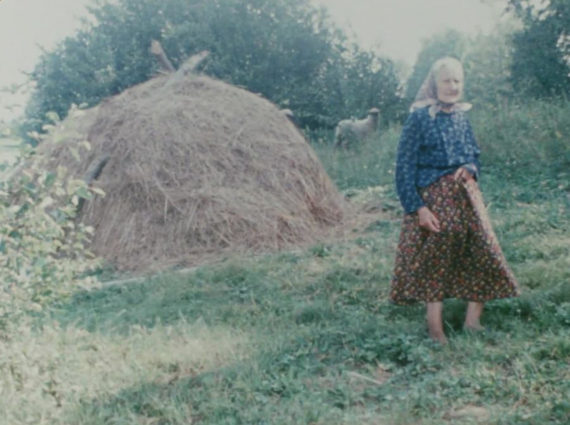 Jonas Mekas, Reminiscences of a Journey to Lithuania