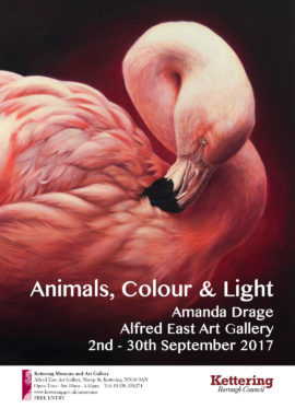 Animals Colour and light poster