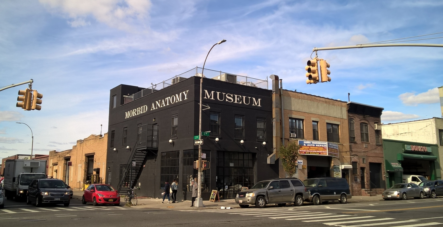 Morbid Anatomy Museum Exterior - a-n The Artists Information Company
