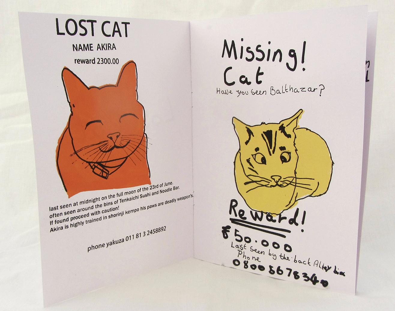 Rebecca Weeks, Lost Cat, screen-printed book from the 'Lost' series, 2017. Photo: Rebecca Weeks