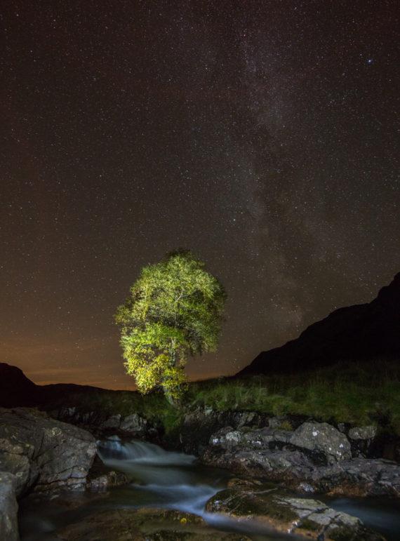 the Langstrath Birch under the Milky Way