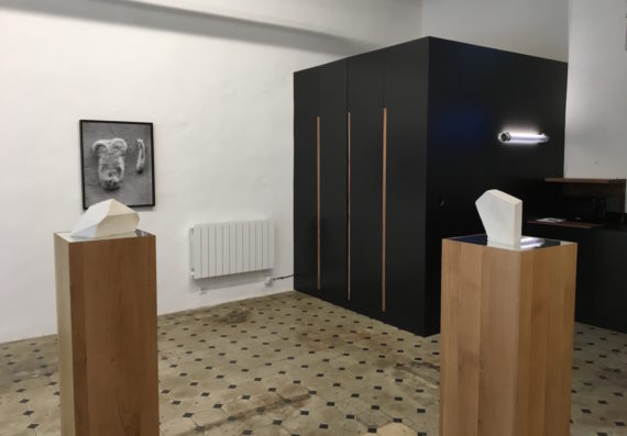 Gilles Pourtier, installation view, Printemps De L'Art Contemporain 2018, Marseille. Photo: Chris Sharratt