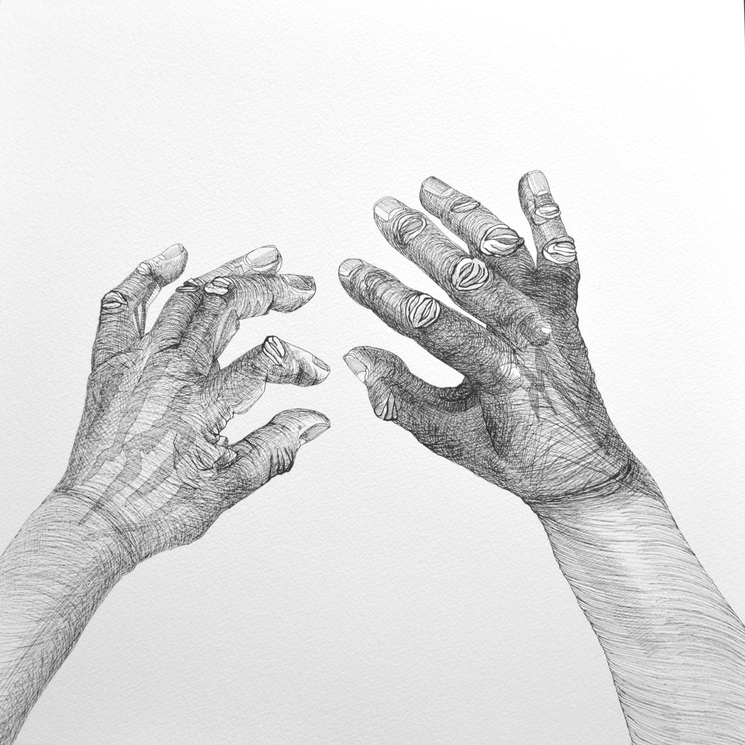 Cally Trench, Hands 3 (2018), Ink on paper, 40 x 40 cm